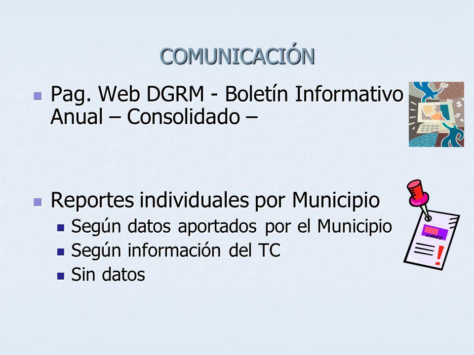 COMUNICACIÓN Pag. Web DGRM - Boletín Informativo Anual – Consolidado – Pag.