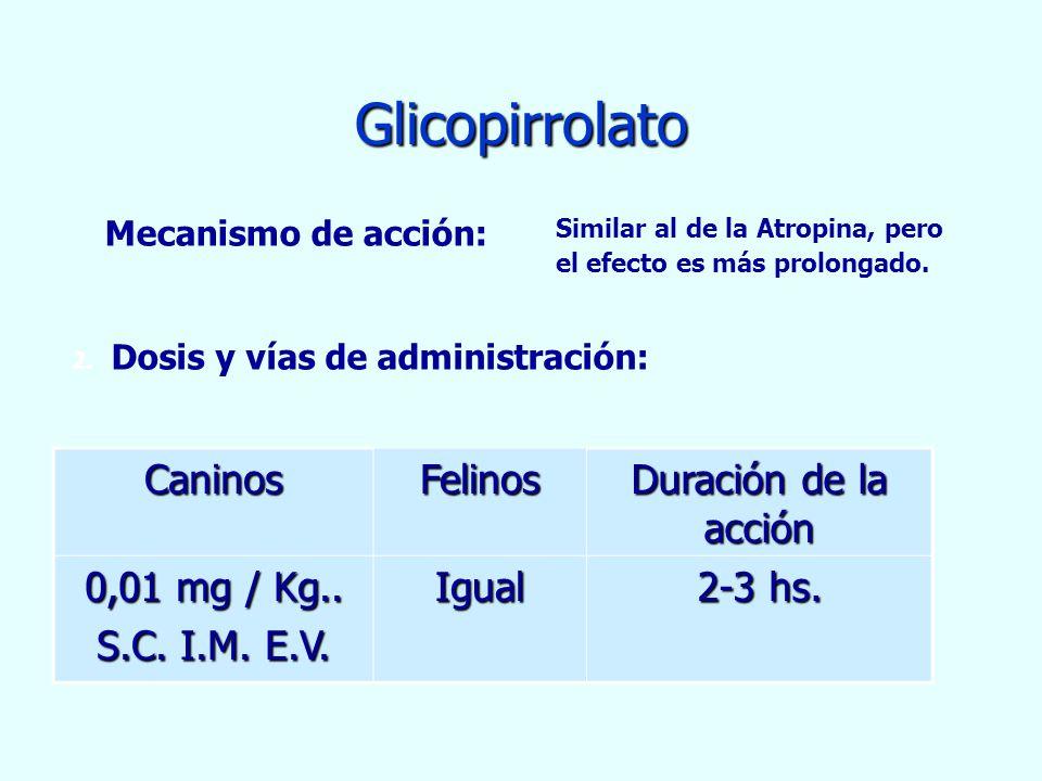 Glicopirrolato CaninosFelinos Duración de la acción 0,01 mg / Kg.. S.C. I.M. E.V. Igual 2-3 hs. Mecanismo de acción: Similar al de la Atropina, pero e