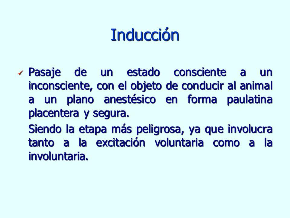 Inducción Pasaje de un estado consciente a un inconsciente, con el objeto de conducir al animal a un plano anestésico en forma paulatina placentera y
