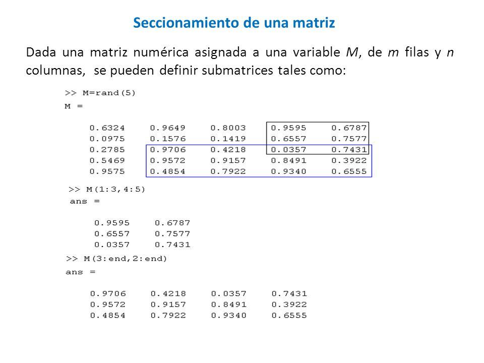 Dada una matriz numérica asignada a una variable M, de m filas y n columnas, se pueden definir submatrices tales como: Seccionamiento de una matriz