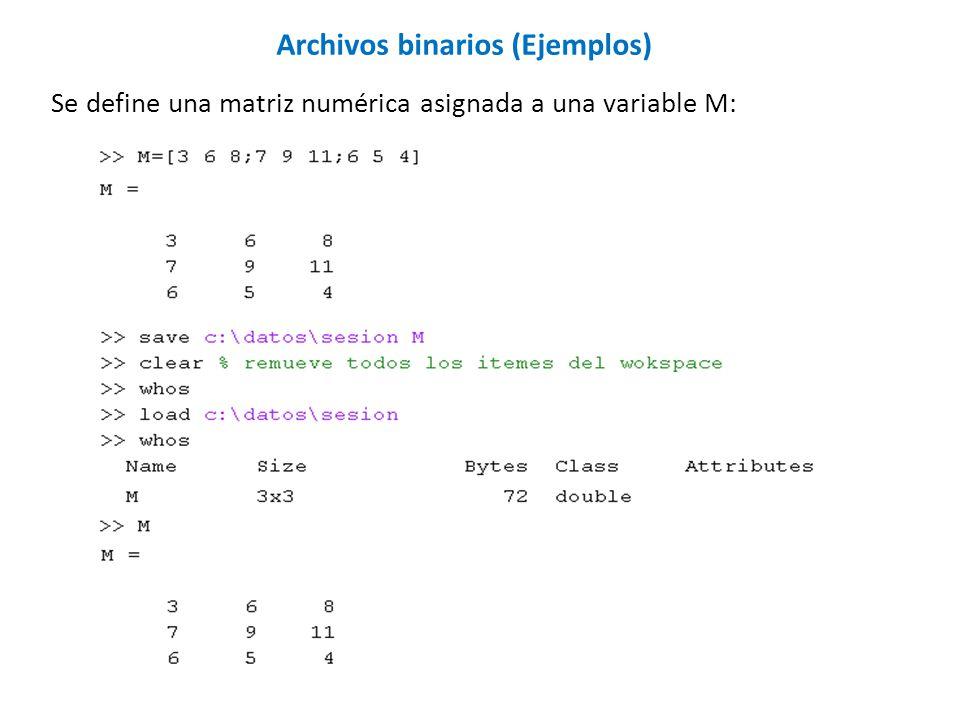 Se define una matriz numérica asignada a una variable M: Archivos binarios (Ejemplos)