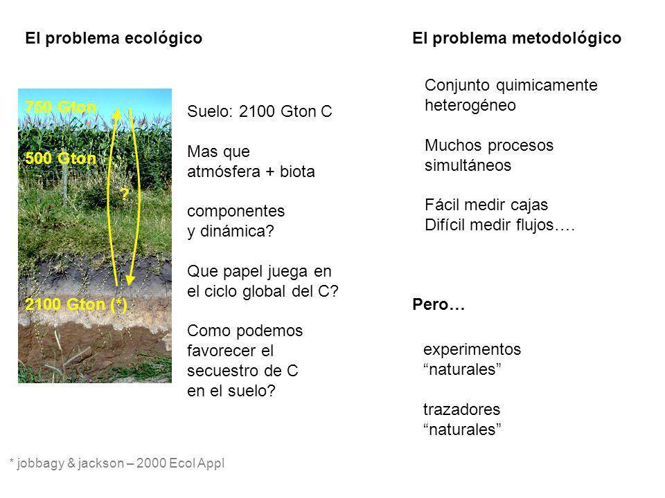 El problema ecológico Suelo: 2100 Gton C Mas que atmósfera + biota componentes y dinámica? Que papel juega en el ciclo global del C? Como podemos favo