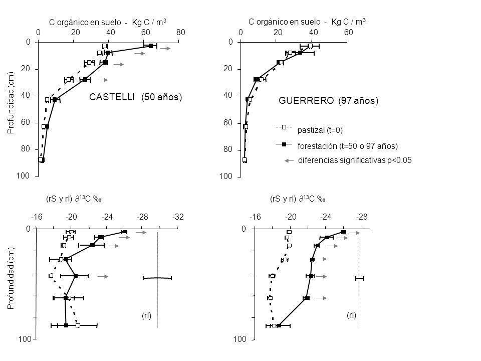 0 20 40 60 80 100 020406080 0 20 40 60 80 100 0204060 C orgánico en suelo - Kg C / m 3 diferencias significativas p<0.05 pastizal (t=0) forestación (t