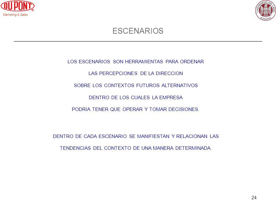Marketing & Sales 24 ESCENARIOS LOS ESCENARIOS SON HERRAMIENTAS PARA ORDENAR LAS PERCEPCIONES DE LA DIRECCION SOBRE LOS CONTEXTOS FUTUROS ALTERNATIVOS