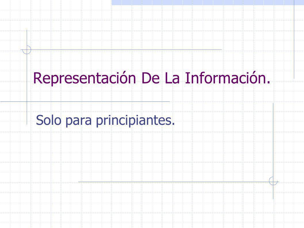 Representación De La Información. Solo para principiantes.
