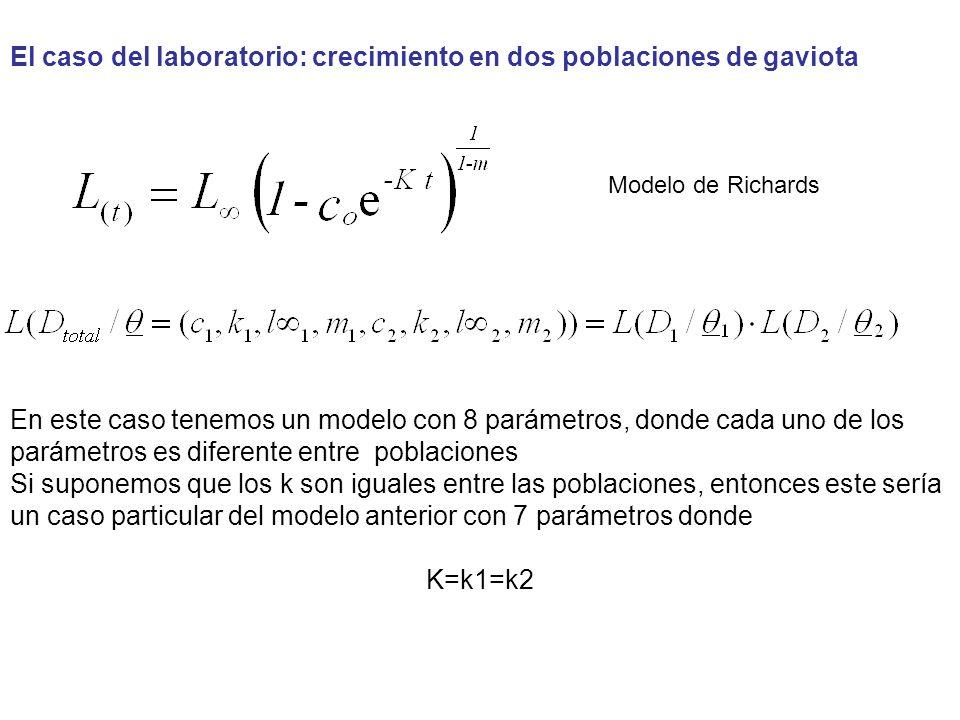 El caso del laboratorio: crecimiento en dos poblaciones de gaviota Modelo de Richards En este caso tenemos un modelo con 8 parámetros, donde cada uno de los parámetros es diferente entre poblaciones Si suponemos que los k son iguales entre las poblaciones, entonces este sería un caso particular del modelo anterior con 7 parámetros donde K=k1=k2