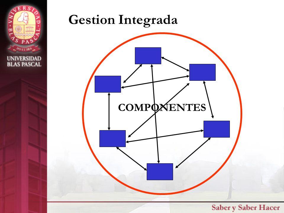 COMPONENTES Gestion Integrada