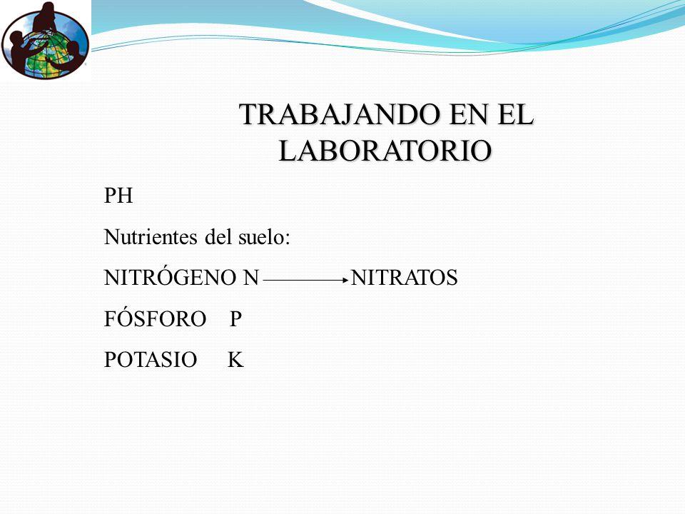 PH Nutrientes del suelo: NITRÓGENO N NITRATOS FÓSFORO P POTASIO K TRABAJANDO EN EL LABORATORIO
