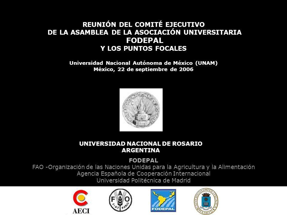 PRIMERA CÁTEDRA FODEPAL OBSERVATORIO DEL SUR Hacia un desarrollo sustentable PUNTO FOCAL FODEPAL