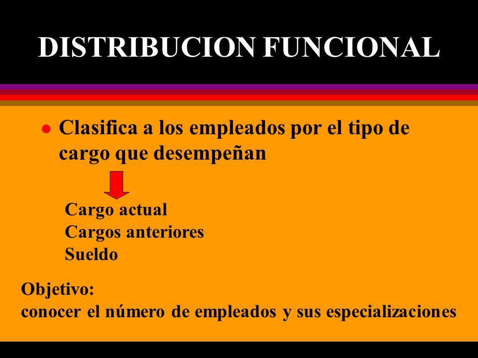 DISTRIBUCION FUNCIONAL l Clasifica a los empleados por el tipo de cargo que desempeñan Cargo actual Cargos anteriores Sueldo Objetivo: conocer el número de empleados y sus especializaciones