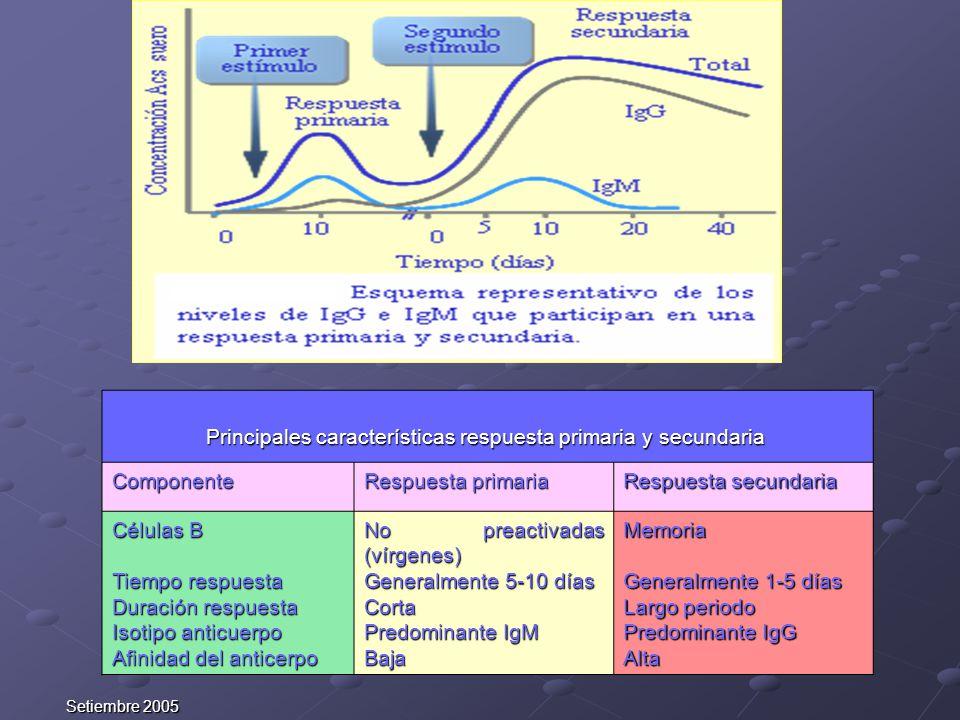 Setiembre 2005 Principales características respuesta primaria y secundaria Principales características respuesta primaria y secundaria Componente Resp