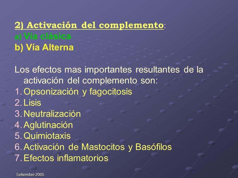 Setiembre 2005 2) Activación del complemento : a) Vía clásica b) Vía Alterna Los efectos mas importantes resultantes de la activación del complemento