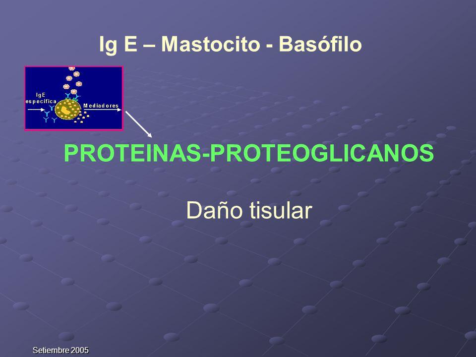 Setiembre 2005 PROTEINAS-PROTEOGLICANOS Daño tisular Ig E – Mastocito - Basófilo