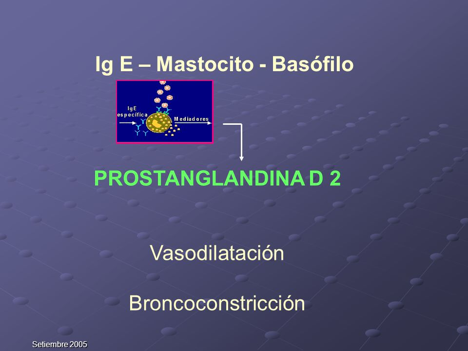 Setiembre 2005 PROSTANGLANDINA D 2 Vasodilatación Broncoconstricción Ig E – Mastocito - Basófilo