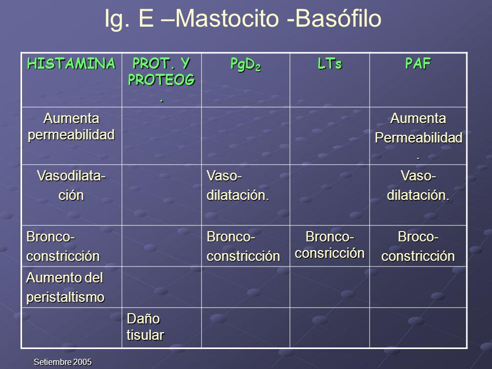 Setiembre 2005 HISTAMINA PROT. Y PROTEOG. PgD 2 LTsPAF Aumenta permeabilidad Aumenta Permeabilidad. Vasodilata-ciónVaso-dilatación.Vaso-dilatación. Br