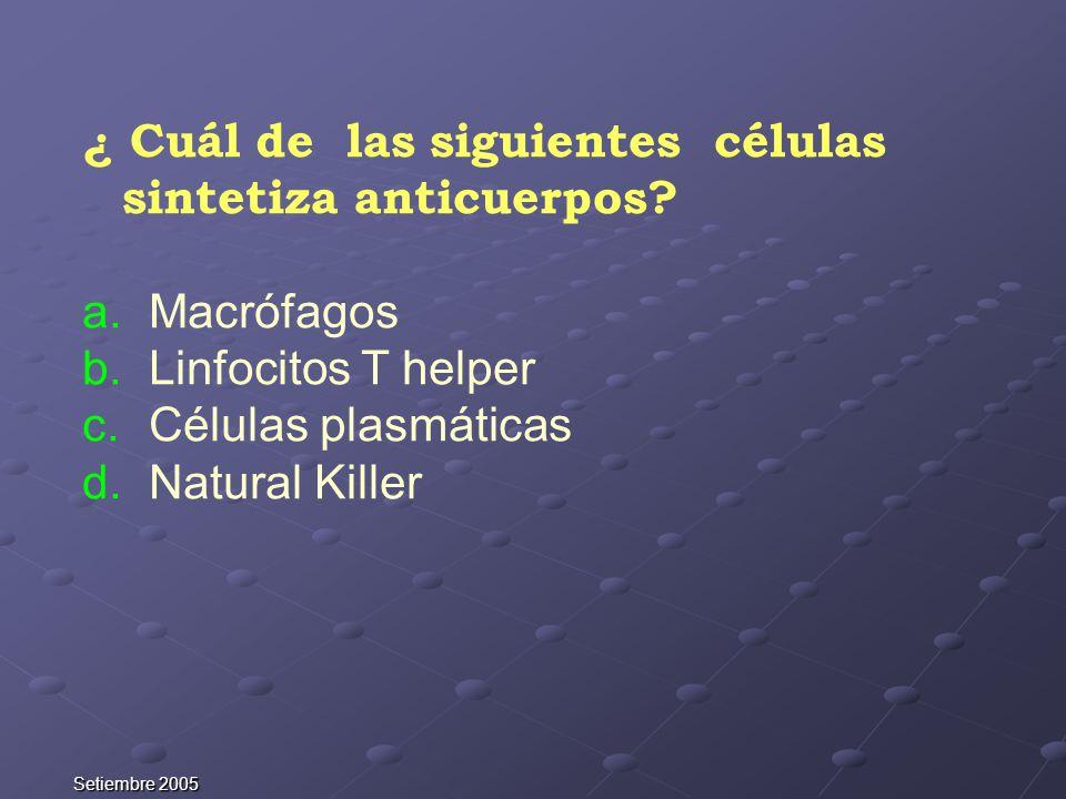 Setiembre 2005 ¿ Cuál de las siguientes células sintetiza anticuerpos? a. Macrófagos b. Linfocitos T helper c. Células plasmáticas d. Natural Killer