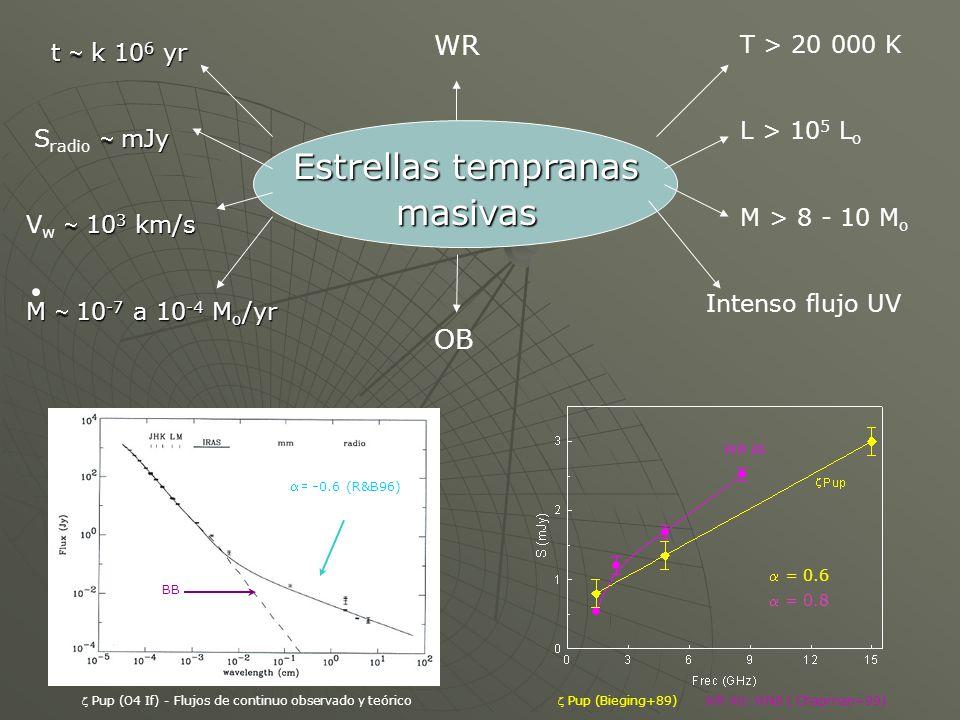 Emisión no-térmica a altas energías Dispersión Compton inversa: electrones relativistas Dispersión Compton inversa: electrones relativistas interaccionan con los fotones UV estelares; interaccionan con los fotones UV estelares; h IC = 4/3 2 h syn : espectro idéntico al sincrotrón h IC = 4/3 2 h syn : espectro idéntico al sincrotrón Bremsstrahlung relativista: Bremsstrahlung relativista: cuando electrones relativistas cuando electrones relativistas se aceleran en el campo se aceleran en el campo electrostático de los electrostático de los núcleos núcleos Decaimiento de piones neutros: Decaimiento de piones neutros: producidos a partir de producidos a partir de interacciones entre protones interacciones entre protones relativistas y núcleos del viento relativistas y núcleos del viento o del MIE, en las tres regiones: o del MIE, en las tres regiones: p + p 0 + X, 0 + p + p 0 + X, 0 + MECANISMOS