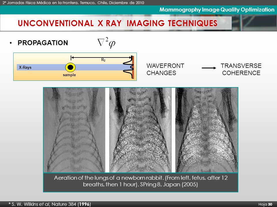 X Seminario Latinoamericano de Análisis por Técnicas de Rayos X, SARX 2006 Hoja 30 Imágenes de Rayos X de Alto Contraste * S.