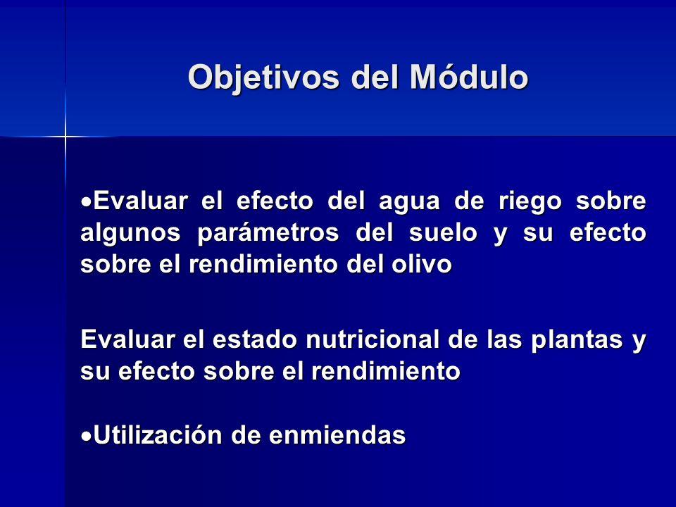 Objetivos del Módulo Evaluar el efecto del agua de riego sobre algunos parámetros del suelo y su efecto sobre el rendimiento del olivo Evaluar el efec