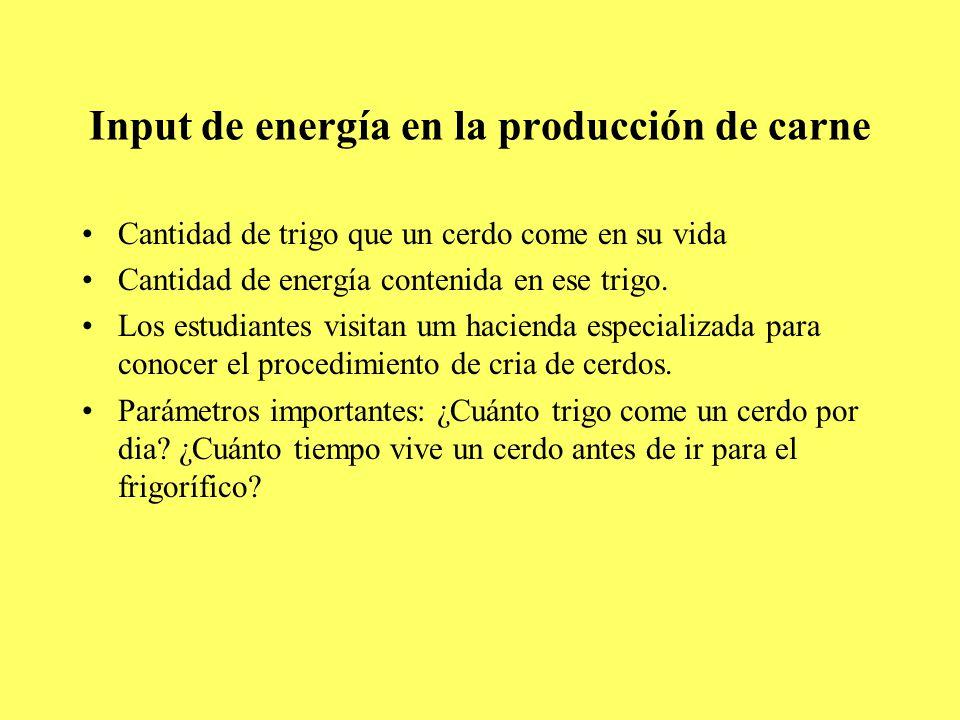 Input de energía en la producción de carne Cantidad de trigo que un cerdo come en su vida Cantidad de energía contenida en ese trigo.