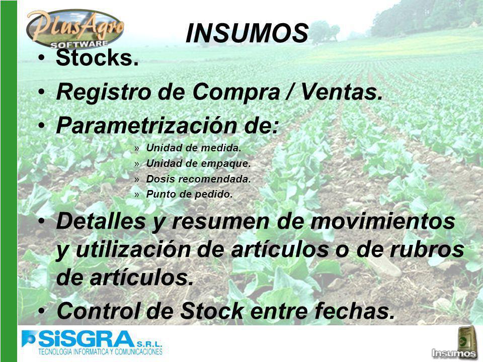 INSUMOS Stocks.Registro de Compra / Ventas. Parametrización de: »Unidad de medida.