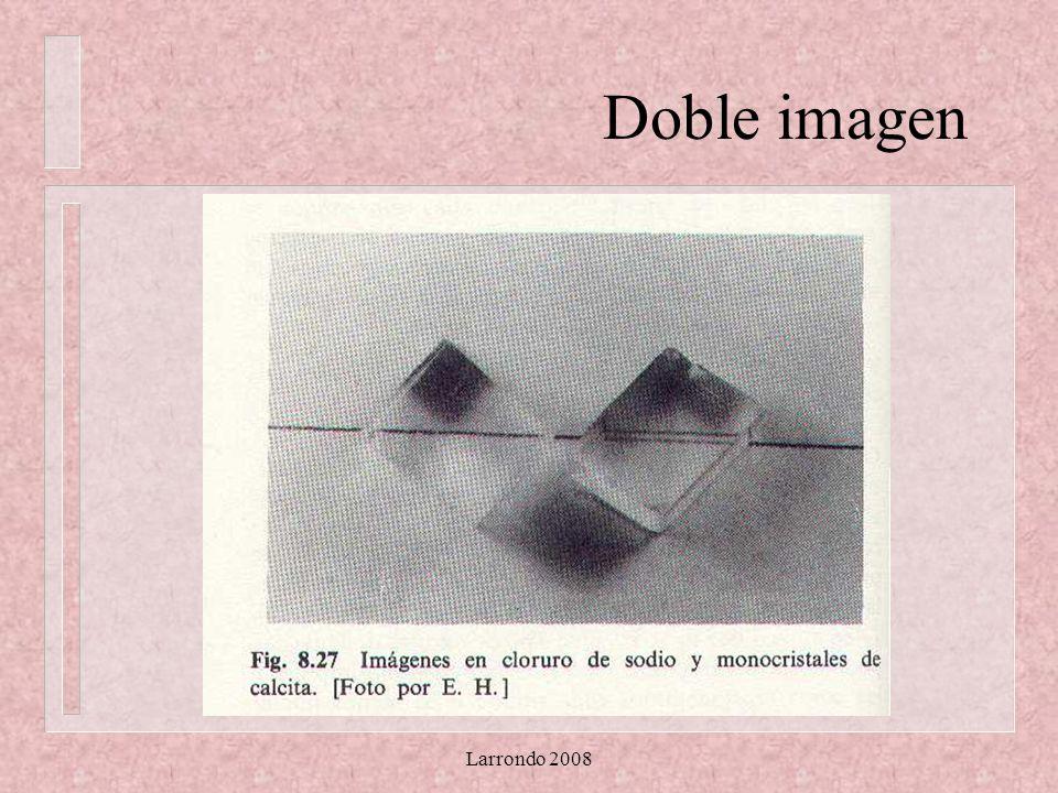 Larrondo 2008 Doble Imagen