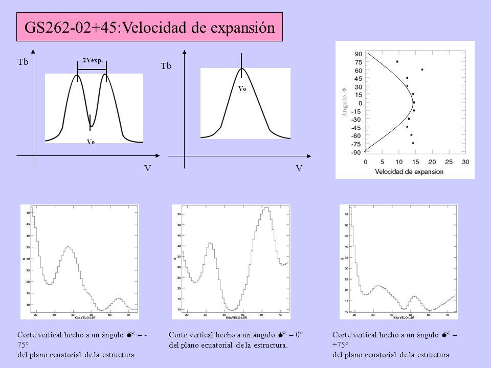 Corte vertical hecho a un ángulo = - 75° del plano ecuatorial de la estructura.