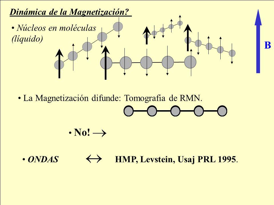 Mesoscopic Echoes: NMR experiments