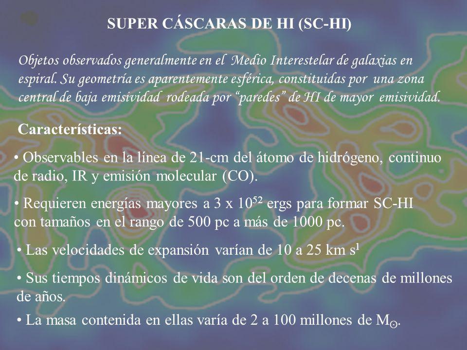 I – Estudiar la posible génesis de cáscaras y super cáscaras de HI en la Vía Láctea.