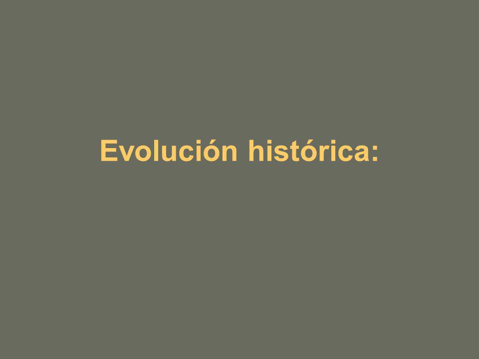 Evolución histórica: