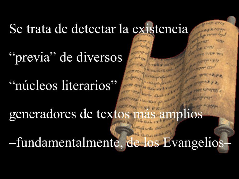 Se trata de detectar la existencia previa de diversos núcleos literarios generadores de textos más amplios –fundamentalmente, de los Evangelios–