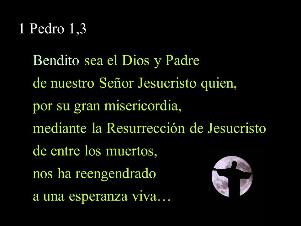 1 Pedro 1,3 Bendito sea el Dios y Padre de nuestro Señor Jesucristo quien, por su gran misericordia, mediante la Resurrección de Jesucristo de entre l