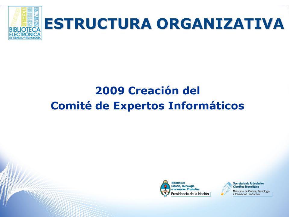 ESTRUCTURA ORGANIZATIVA 2009 Creación del Comité de Expertos Informáticos