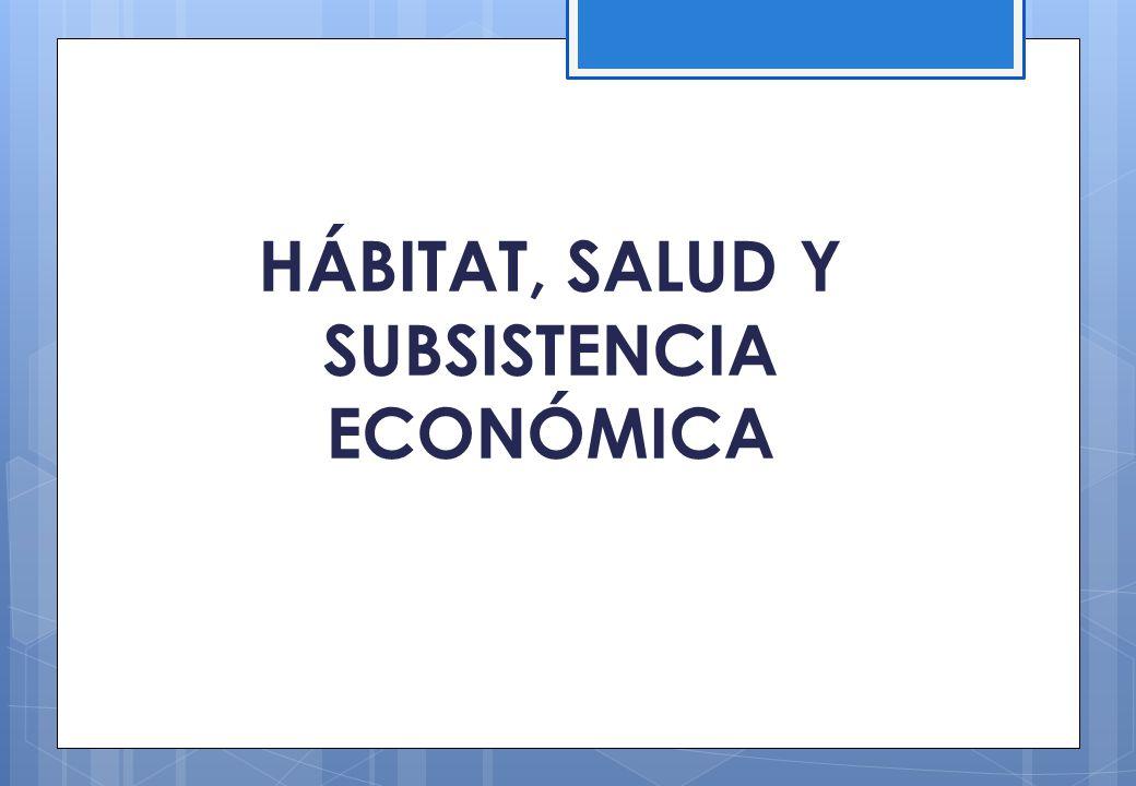 Una necesaria evaluación crítica del período político-económico actual… Indiscutibles logros del modelo macro económico en materia de derechos sociales, crecimiento, políticas de inversión pública y políticas sociales.