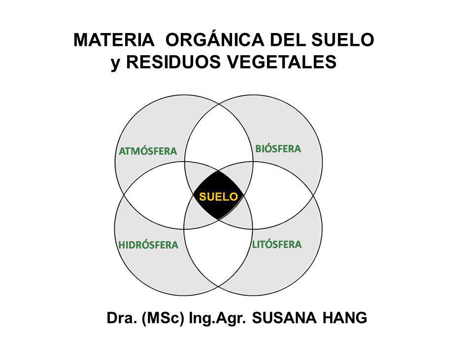 Dra. (MSc) Ing.Agr. SUSANA HANG MATERIA ORGÁNICA DEL SUELO y RESIDUOS VEGETALES