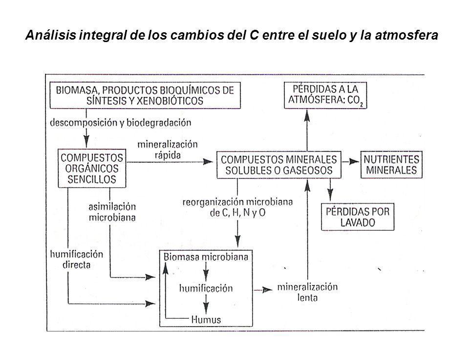 Análisis integral de los cambios del C entre el suelo y la atmosfera