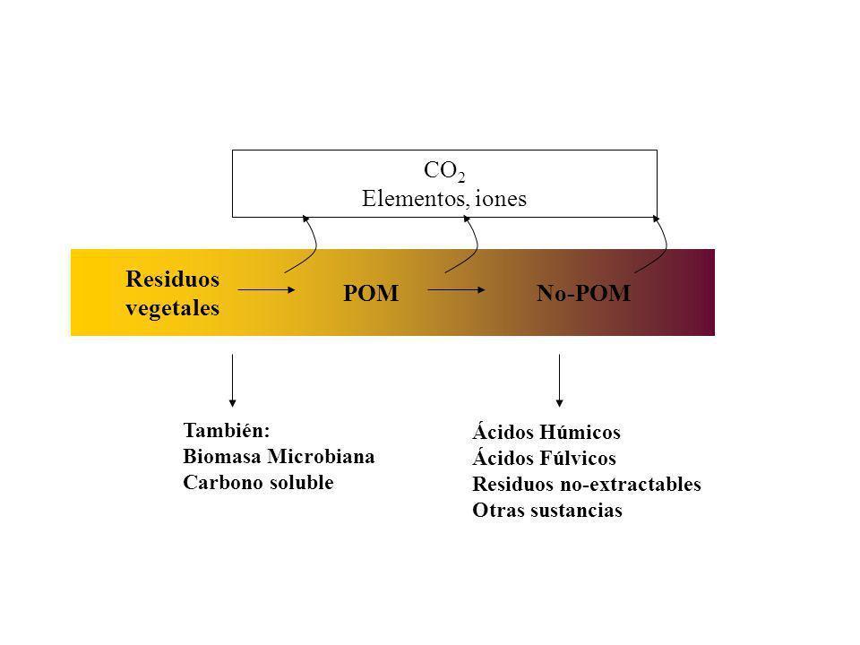 Residuos vegetales POMNo-POM También: Biomasa Microbiana Carbono soluble CO 2 Elementos, iones Ácidos Húmicos Ácidos Fúlvicos Residuos no-extractables