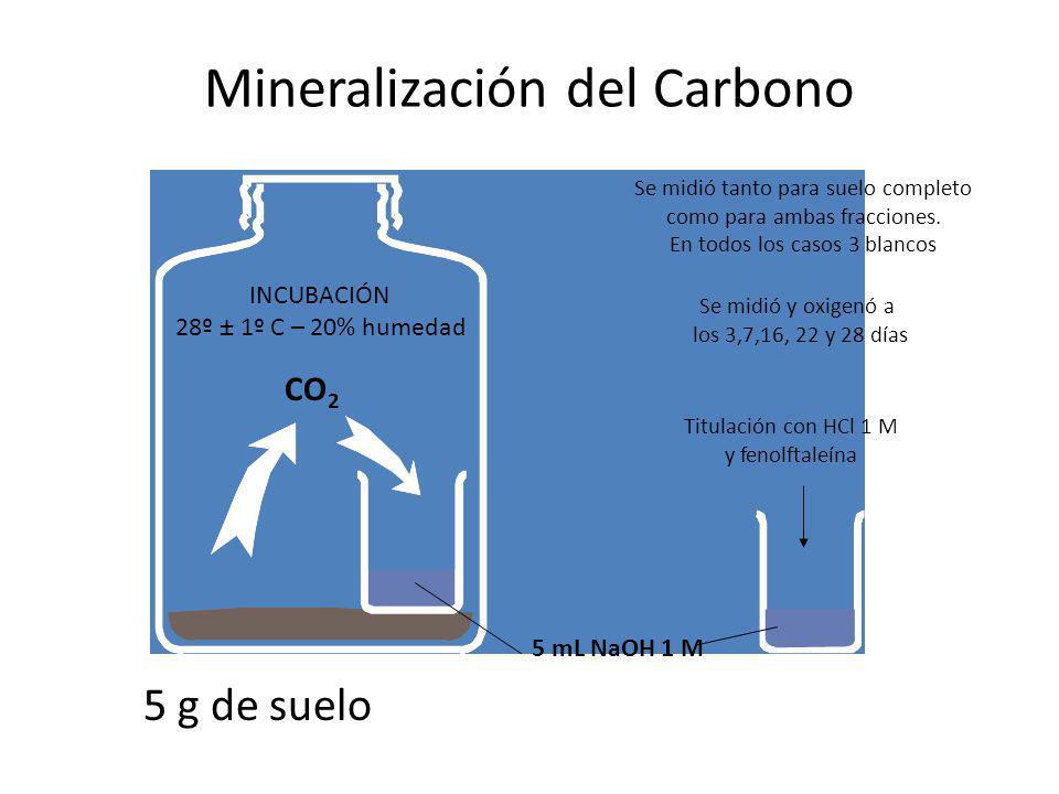 Mineralización del Carbono CO 2 INCUBACIÓN 28º ± 1º C – 20% humedad Se midió tanto para suelo completo como para ambas fracciones. En todos los casos