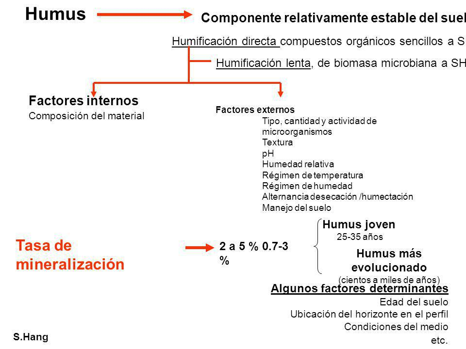 S.Hang Humus Componente relativamente estable del suelo Algunos factores determinantes Edad del suelo Ubicación del horizonte en el perfil Condiciones