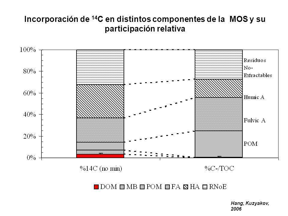 Hang, Kuzyakov, 2006 Incorporación de 14 C en distintos componentes de la MOS y su participación relativa