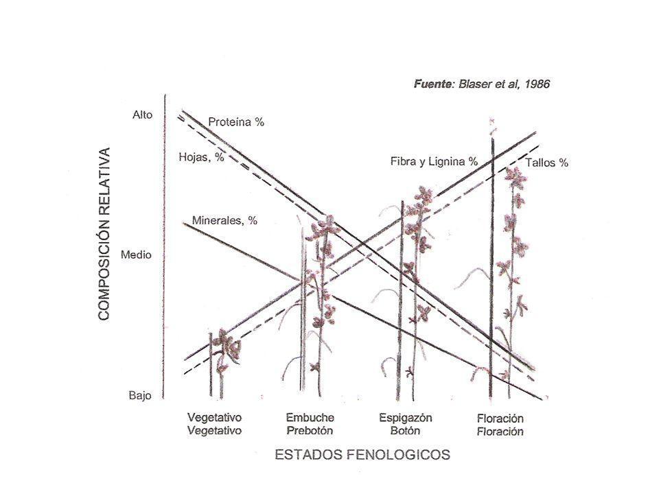 Composición química de la parte aérea de diferentes rastrojos %C%NC/N%FDN%FDA Gramilla (Cynodon)42,71,1636,875,639,1 Lotus corniculatus42,72,4417,543,228,4 Maíz-caña40,50,6859,660,430,4 Maíz-hoja41,61,8522,567,231,7 Sorgo-caña39,70,29137,069,940,5 Sorgo-hoja40,30,9343,369,635,9 T.