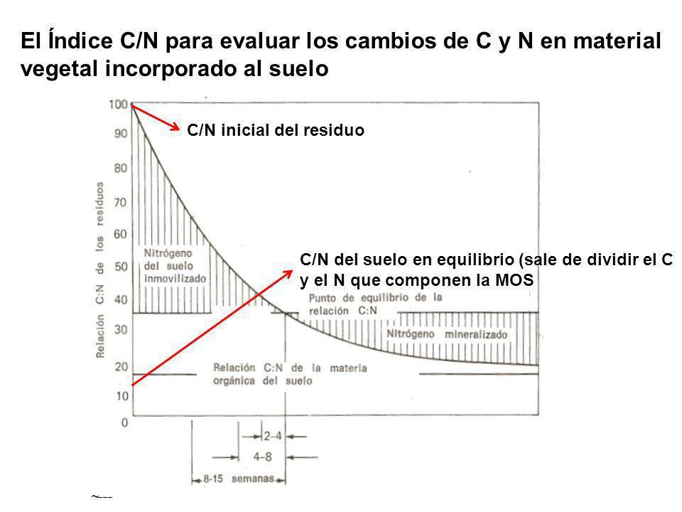 El Índice C/N para evaluar los cambios de C y N en material vegetal incorporado al suelo C/N inicial del residuo C/N del suelo en equilibrio (sale de