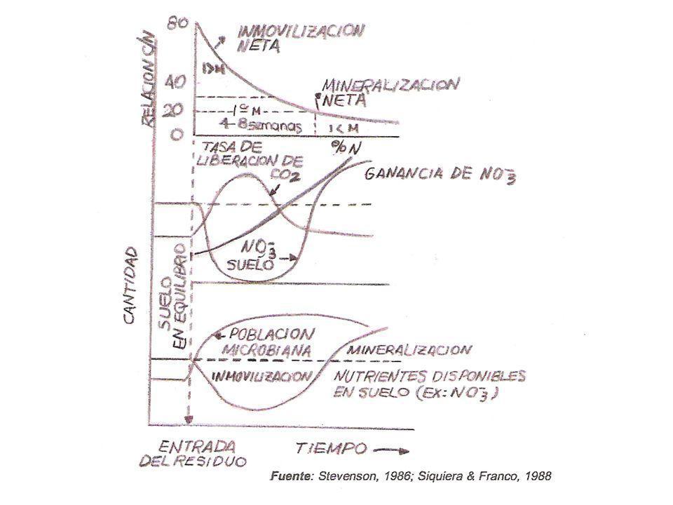 Mineralización del Carbono CO 2 INCUBACIÓN 28º ± 1º C – 20% humedad Se midió tanto para suelo completo como para ambas fracciones.
