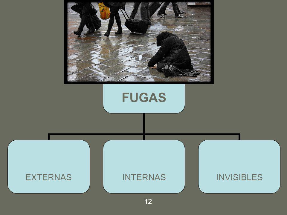 FUGAS EXTERNASINTERNASINVISIBLES 12