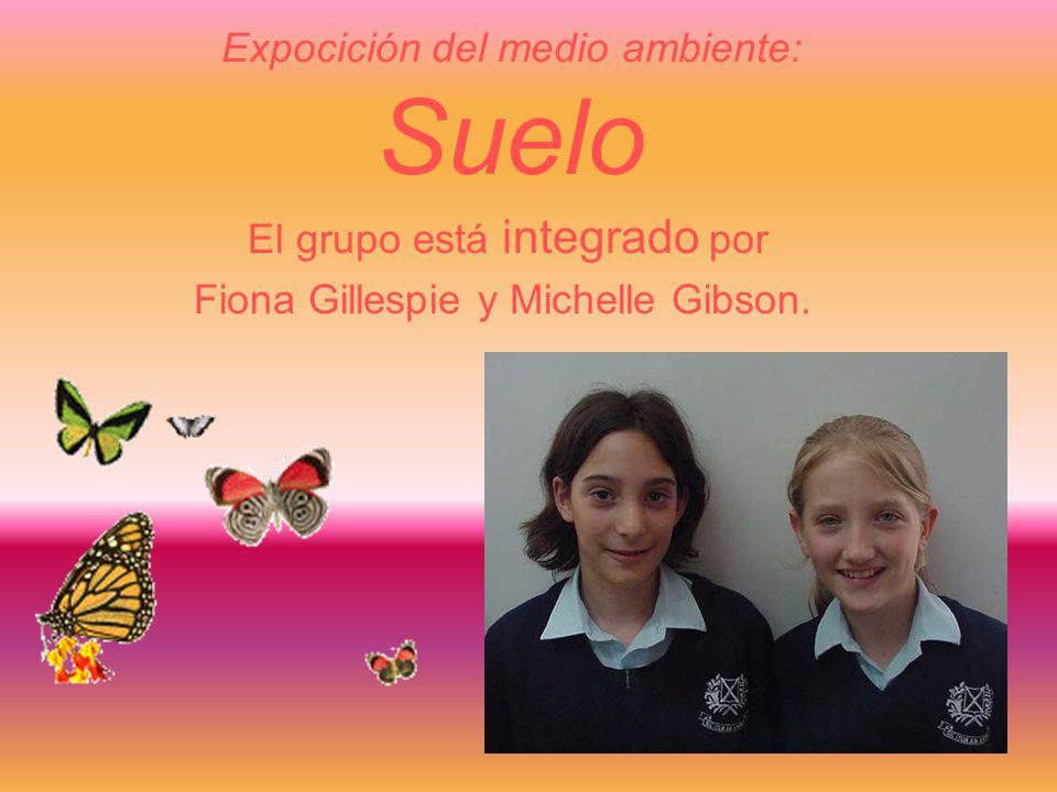 Expocición del medio ambiente: Suelo El grupo está integrado por Fiona Gillespie y Michelle Gibson.