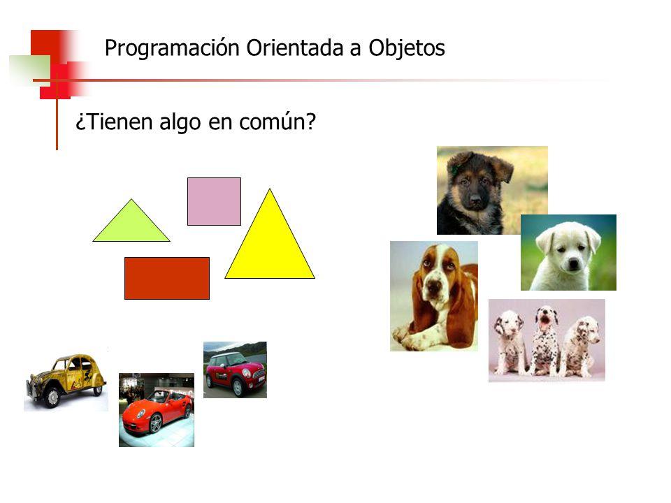 ¿Tienen algo en común? Programación Orientada a Objetos