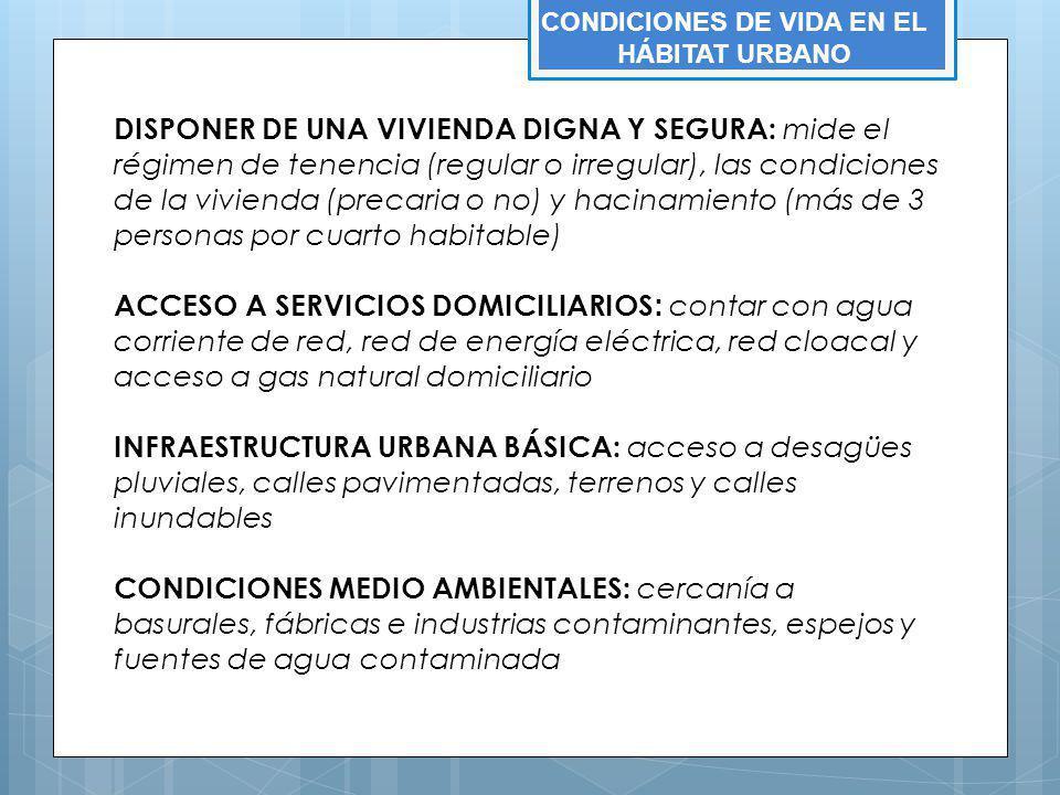 DISPONER DE UNA VIVIENDA DIGNA Y SEGURA: mide el régimen de tenencia (regular o irregular), las condiciones de la vivienda (precaria o no) y hacinamie