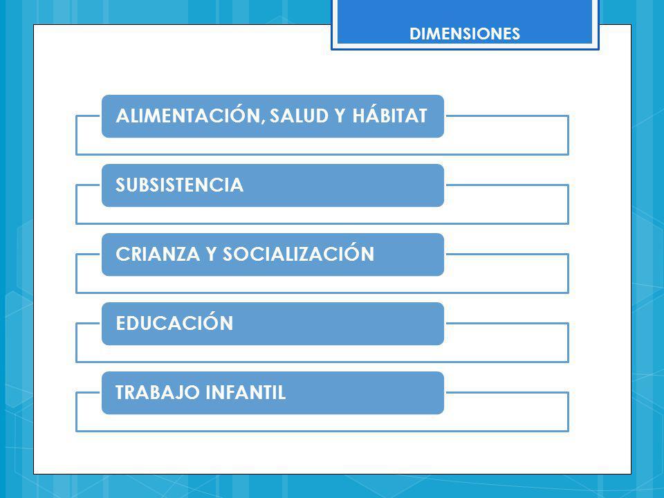 DIMENSIONES ALIMENTACIÓN, SALUD Y HÁBITATSUBSISTENCIACRIANZA Y SOCIALIZACIÓNEDUCACIÓNTRABAJO INFANTIL