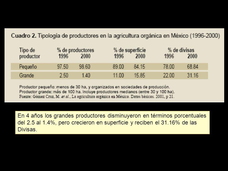 En 4 años los grandes productores disminuyeron en términos porcentuales del 2.5 al 1.4%, pero crecieron en superficie y reciben el 31.16% de las Divisas.