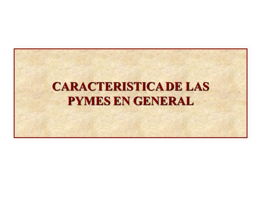 CARACTERISTICA DE LAS PYMES EN GENERAL